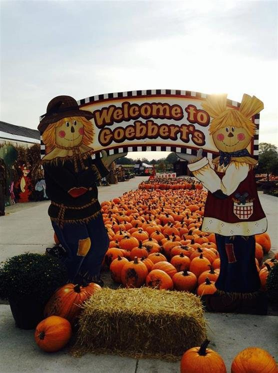 Cox farms fall festival coupons 2018